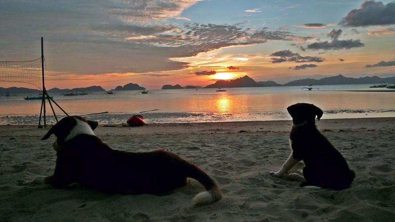 c sunset5.JPG