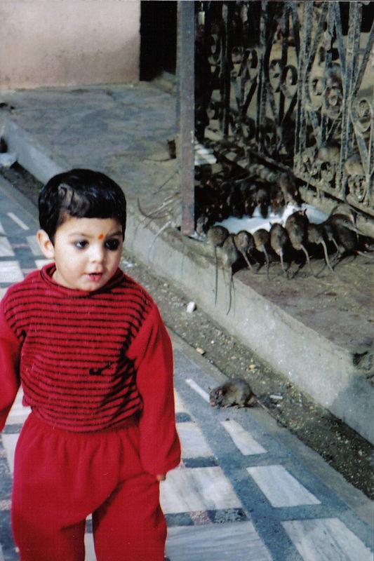 Karni Mata, Deshnoke