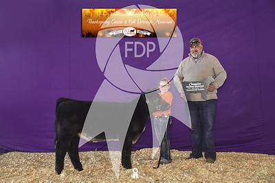 Thanksgiving Classic & Bill Dorough Memorial Cattle Show