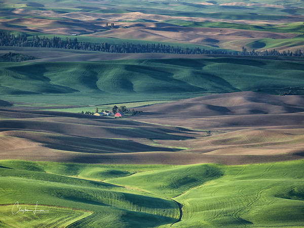Palouse of Eastern Washington