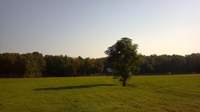 2012-09-26 09.33.09.jpg