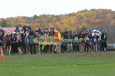 D3 Girls - 2014 MHSAA UP XC Finals