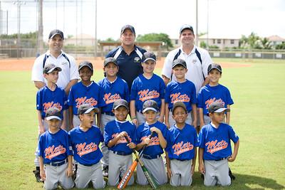 Fall-2008-Mets