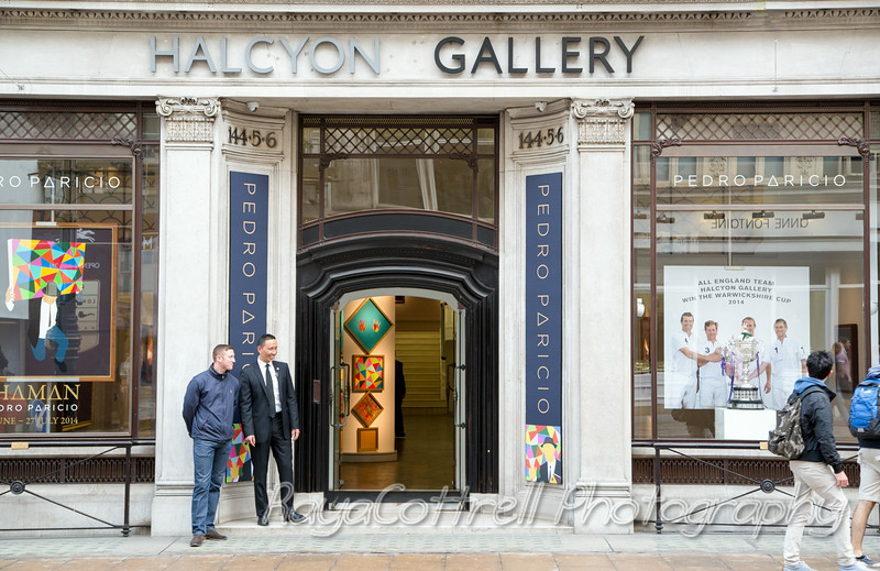 UJIA at Halcyon Gallery
