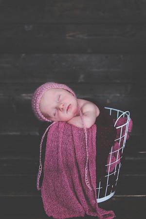 Sophia Full Newborn Photo Session