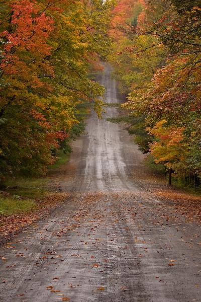 road 9.jpg