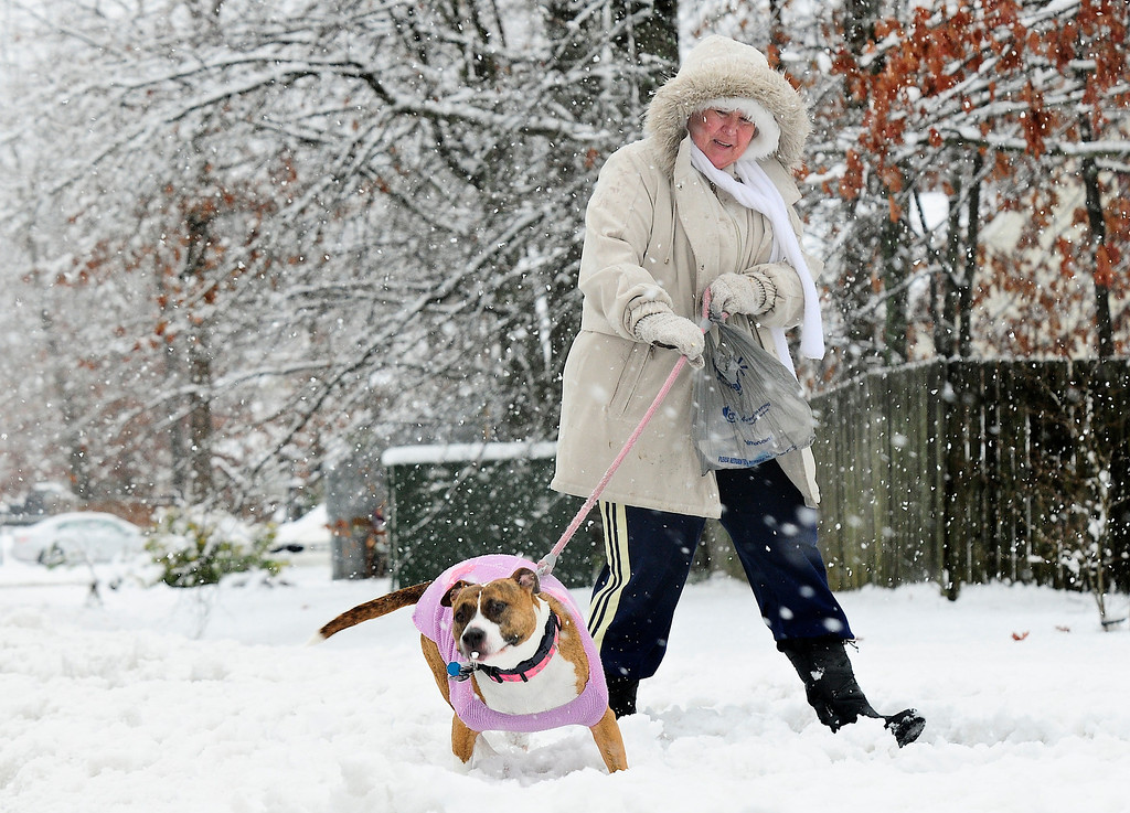. Patty Hoskin takes her dog, Sandy Sue, for a walk along Leavells Crossing Drive in Fredericksburg, Va., during a steady snowfall on Wednesday, March 6, 2013.  Gov. Bob McDonnell declared a state of emergency Wednesday as up to 20 inches of snow piled up in parts of central and western Virginia.  (AP Photo/The Free Lance-Star, Dave Ellis)