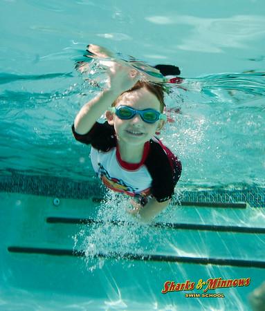 6-2015 Shark Pool