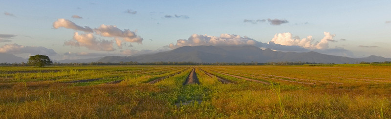 Mountain and Field, Wide - Queensland, Australia