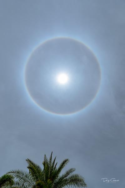 """""""Sun Halo"""""""