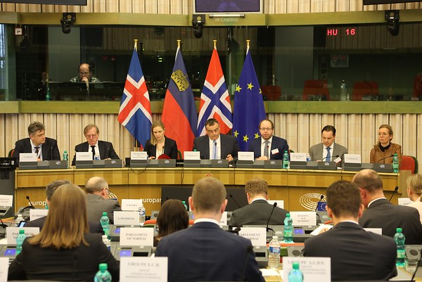 2019-03-13-EEA-Joint-Parliamentary-Committee