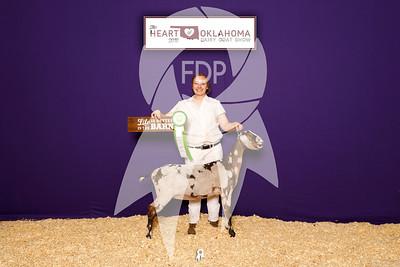 Heart of Oklahoma Dairy Goat Show