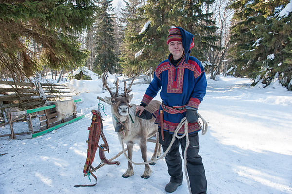 Herder and his Reindeer