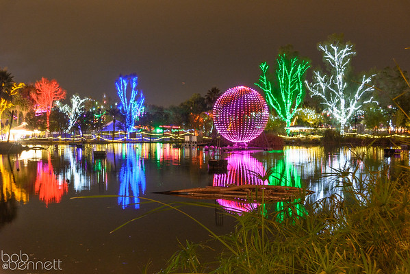 Phoenix Zoo Lights-December 2014