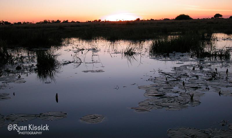 Beautiful sunset over the Botswana wetlands