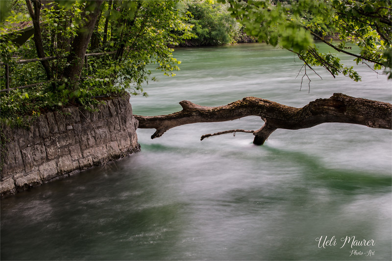 2017-06-14 Rheinfall Neuhausen - 0U5A8421.jpg