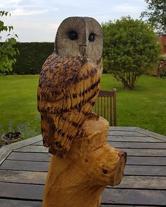 Chainsaw Wood Carved Owls