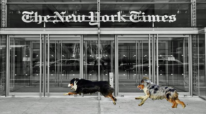 NYT.GaWy_edited-2.jpg