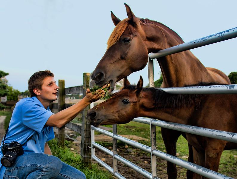 IMG_3281 timothy horses.jpg