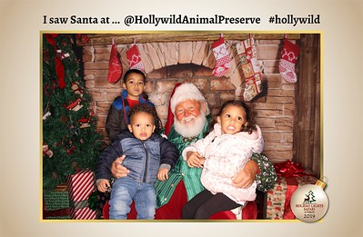 Hollywild Santa Photos - 112419