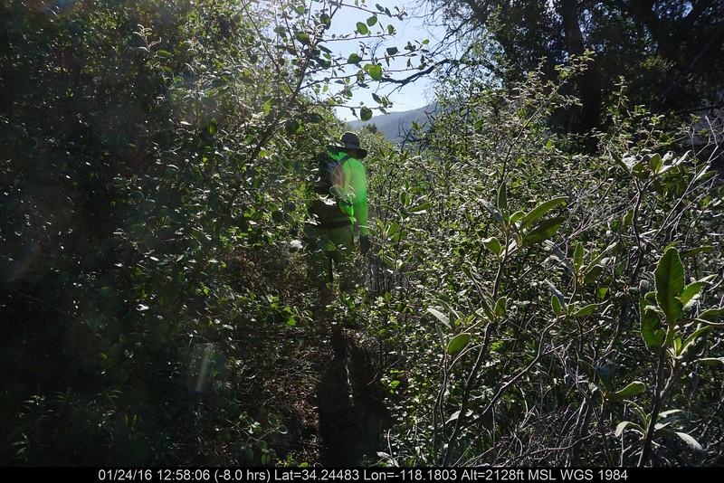 20160124032-Ken Burton Trailwork.JPG