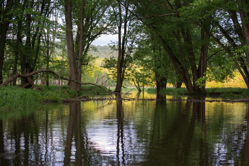 2018-05-20 Kayaking - Wallkill River-untitled (31 of 64)-011.jpg