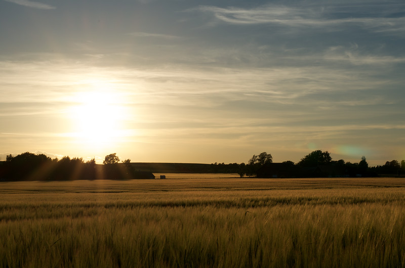 Sunset Over Fields