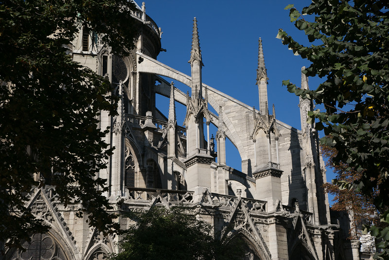 Paris, Notre-Dame Cathedral Apse Flying Buttresses