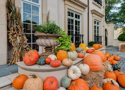 2019 Dorsey Alston Pumpkin Patch