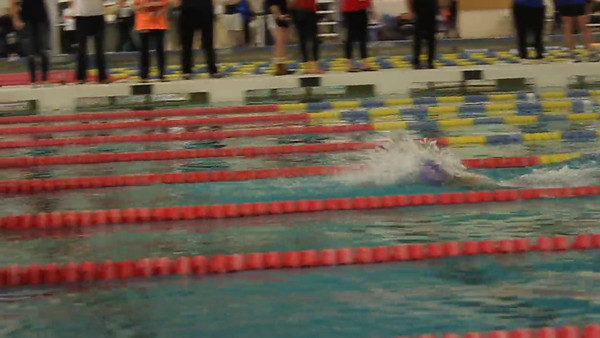Swim: Dulles District 2012 Meet