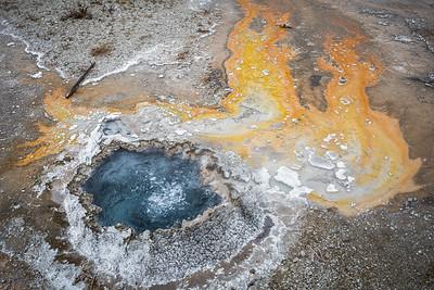 Yellowstone/GTNP