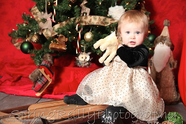 Christmas Portrait Gallery