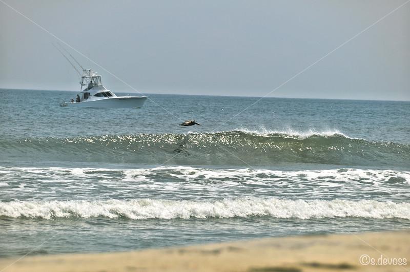 beachscape_0333HDR Wmark.jpg