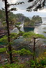 Cape Flattery, the northwestern-most point in the continental United States. Olympic National Park, WA. © 2006 Kenneth R. Sheide