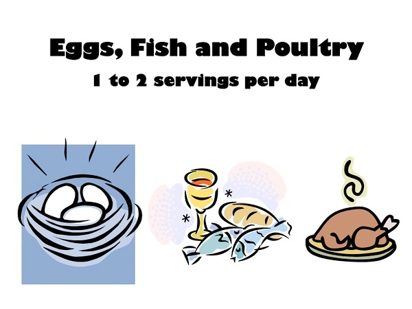 (L51) Eggs, Fish and Poultry