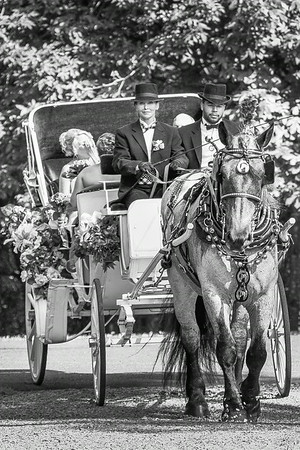 Ceremony - The Bridal Carriage Arrives - Black & White