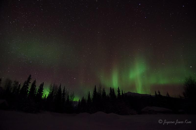 USA-Alaska-Wiseman-Aurora-2856.jpg