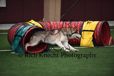Somerset Hill/GSGRC AKC Agility Trial June 10-11