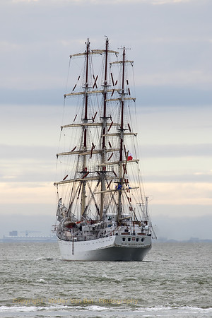 Tall Ships Races 2016_Antwerp