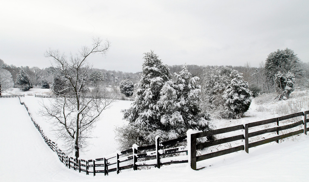 . A rural scene appears to photographed in black and white Thursday, Feb. 13, 2014, in Knoxville, Tenn. after a winter storm Wednesday night dumped 5 to 9 inches of snow with more in surrounding areas. Many schools remained closed on Thursday due to severe weather conditions.  (AP Photo/Wade Payne)