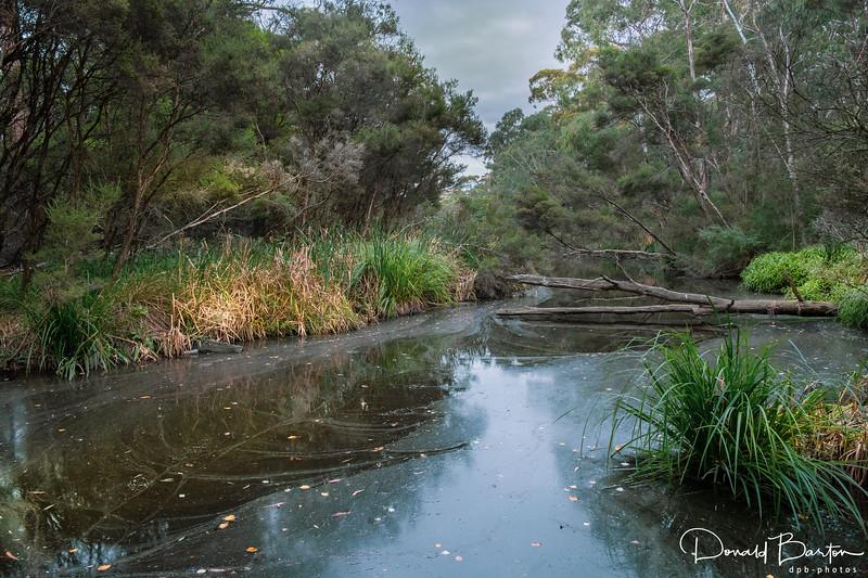 Gardner Creek