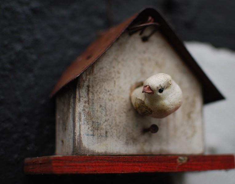Toy birdhouse in Bensberg