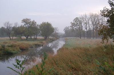 2009 Foggy Wheaton Morning