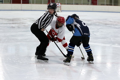 ArrowHead Youth Hockey