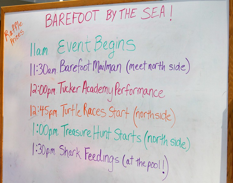 Barefoot by the Sea 2013 4 of 81