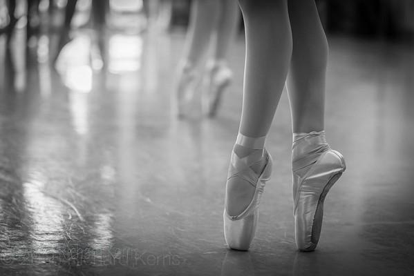 Los Gatos Ballet  2014-2016
