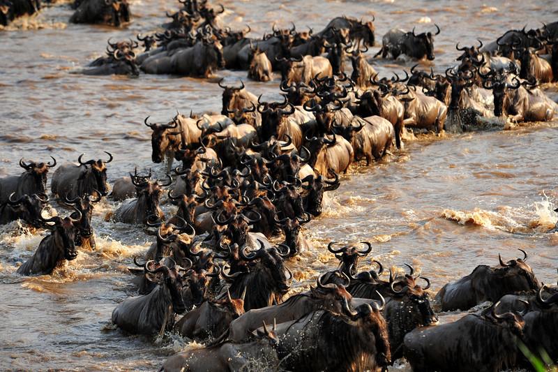 Africa 2010-072.JPG