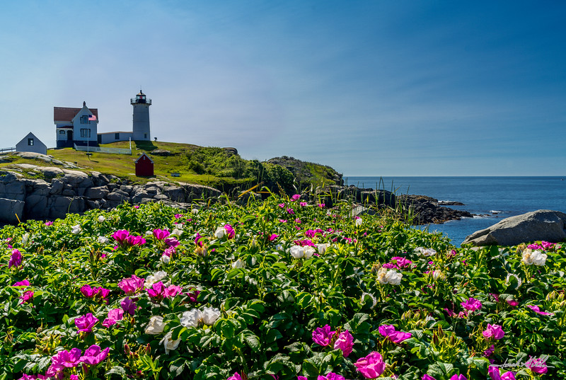 Nubble Light on Cape Neddick