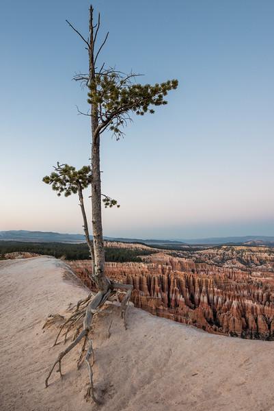 Bryce Canyon-16.jpg