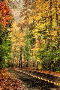 Great Smoky Mountain Fall